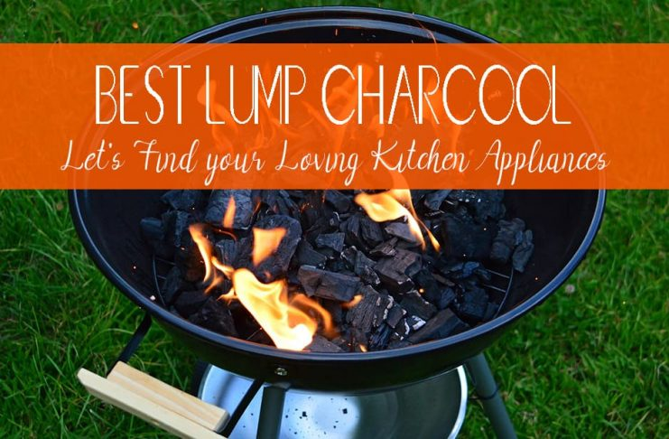 Best Lump Charcoal for Smoking