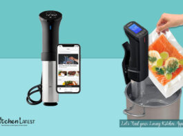 best sous vide immersion cookers